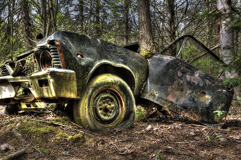 Abandoned, old car in forest
