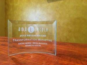AMA Lincoln Award for Transformation Marketing