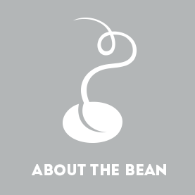 About the Bean graphic in gray