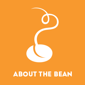 About the Bean