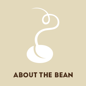About the Bean graphic